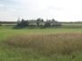 Das Landesgartenschaugelände im September 2013
