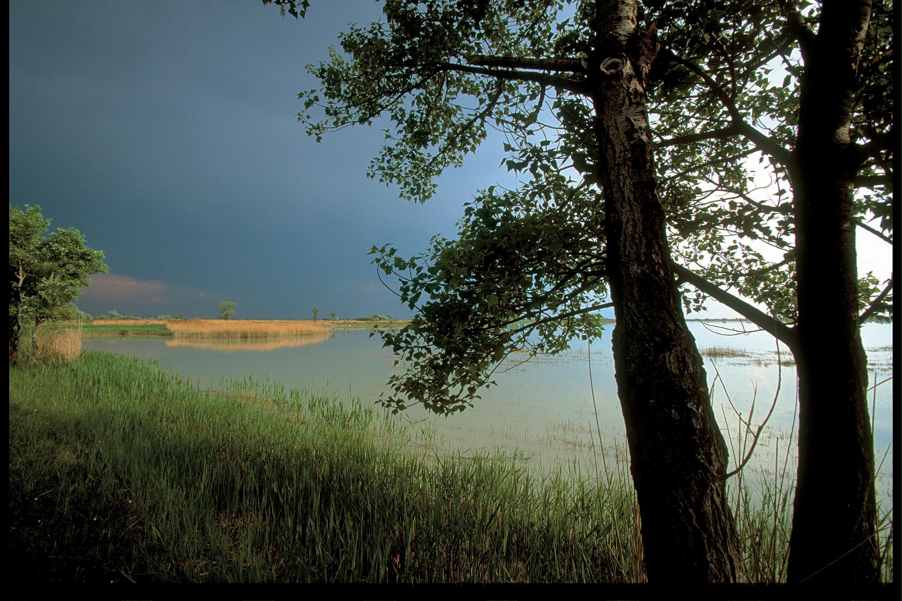nationalpark_neusiedler_see-seewinkel1