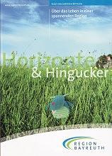 Region_Horizonte_Hingucker