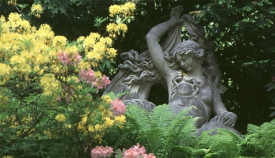 hofgarten2