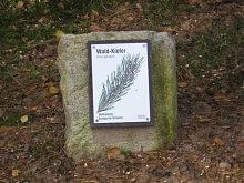 Waldlehrpfad