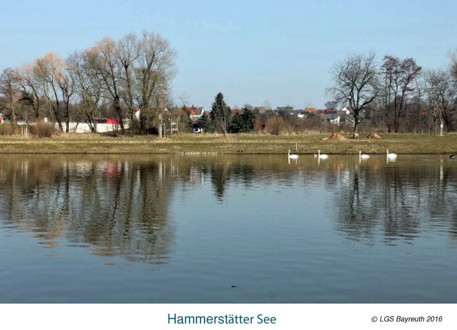 Hammerstätter_See
