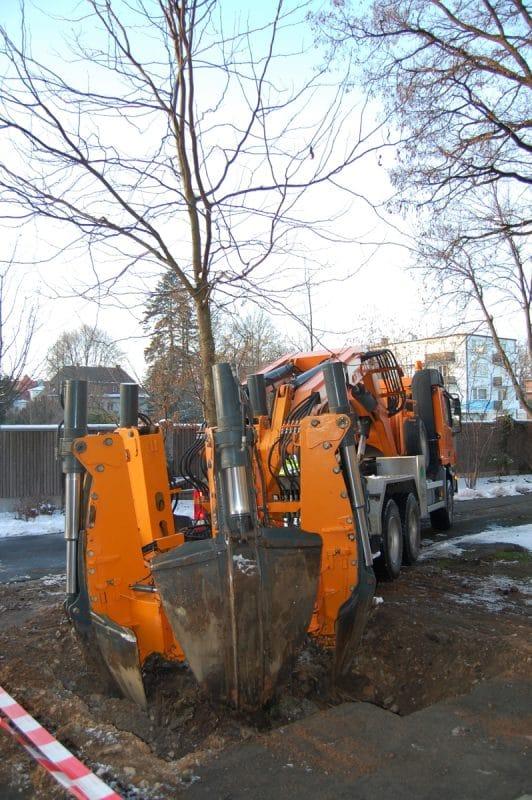 Baumverpflanzung