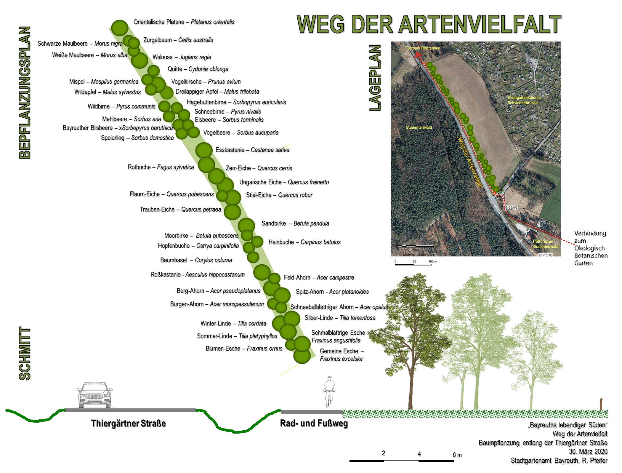 "Planskizze des ""Wegs der Artenvielfalt"""