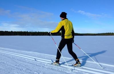 Skisportler in der Langlauf-Loipe