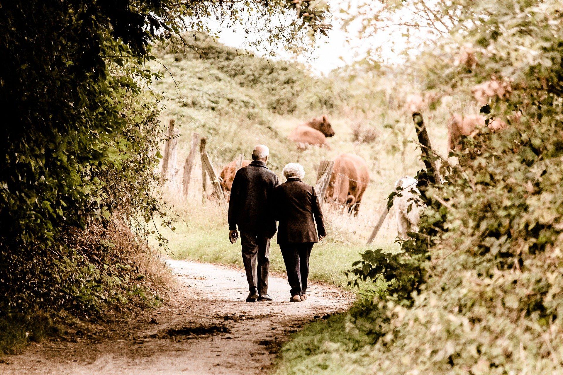 Rentnerpaar auf einem Spazierweg. | Foto: Pixabay