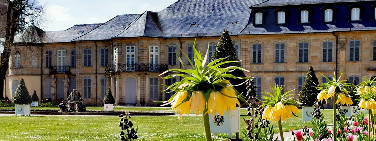 blühende Blume vor dem alten Schloss